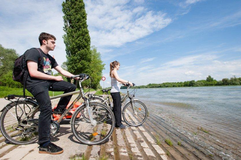 Radfahrer am Rhein