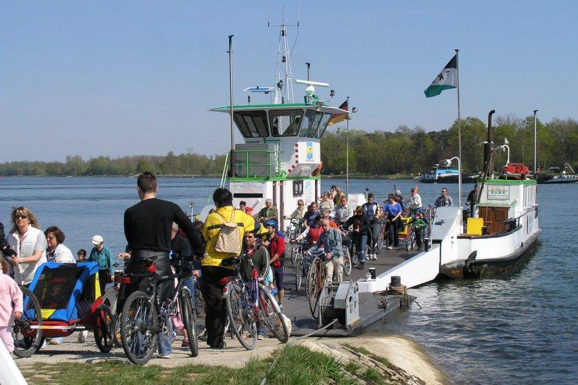 Fahrradfahrer auf Rheinfähre
