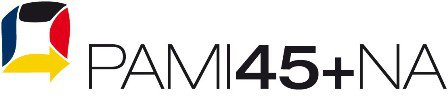 Logo PAMI45+NA